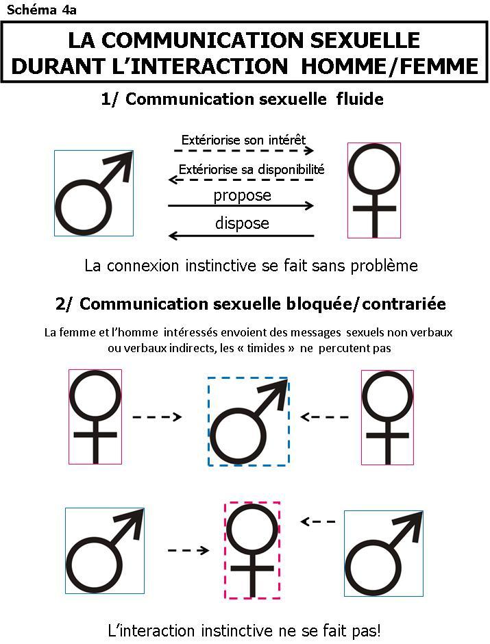 Gay video en francais