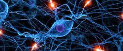 Comment se servir de la plasticité cérébrale pour se guérir ?