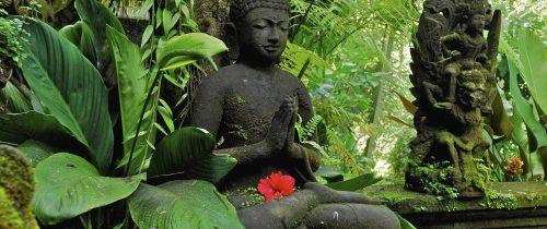 Le point commun de toutes ces thérapies : méditation, hypnose…